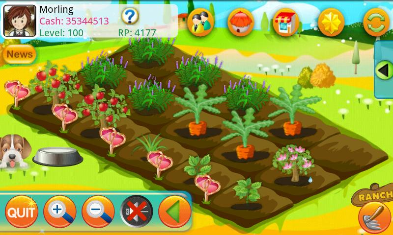 Papaya Farm HD Android Casual