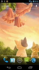 Kitten Sunset Wallpaper Free Android Personalization