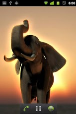 ELEPHANT Live Wallpaper Android Lifestyle