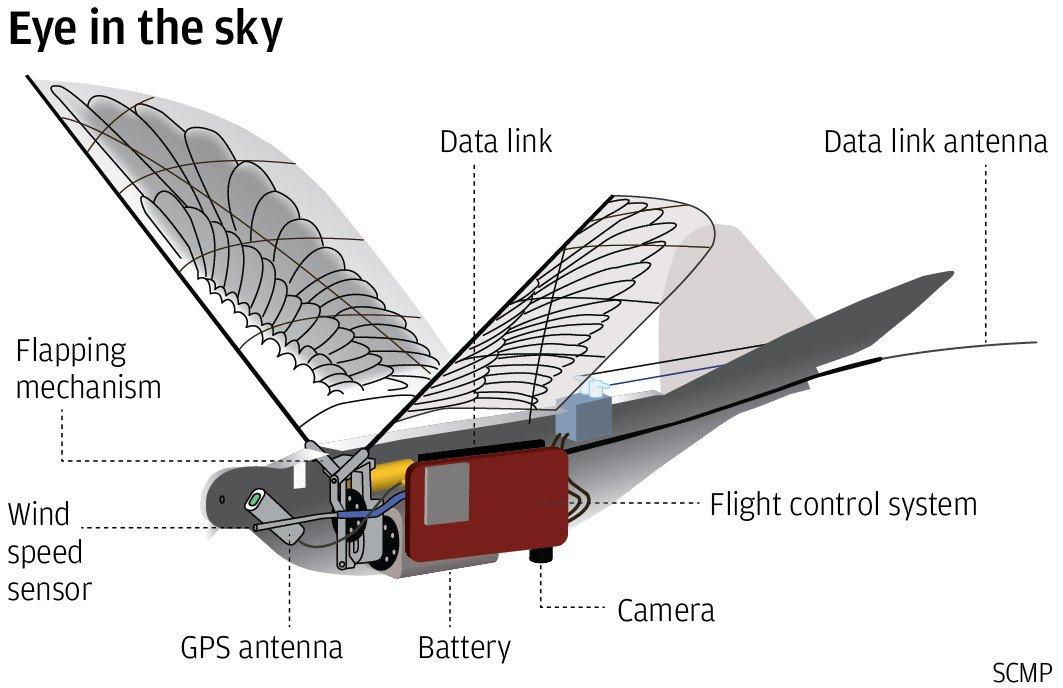 Bird Drones to Spy Citizens